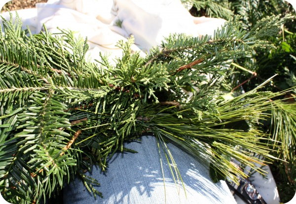 How to make evergreen garland or swags really solutioingenieria Gallery