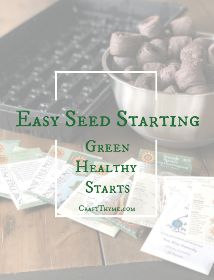 How to start seeds the easy way. Learn tips that will get you healthy starts, that save you money, and give you a garden full of rare veggies, flowers, and fruit!
