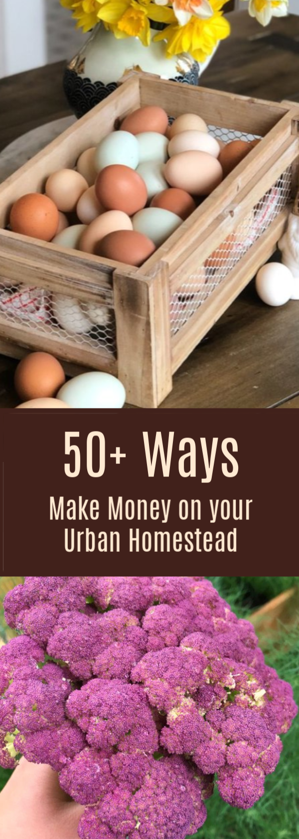 50+ ways to make money on an urban homestead